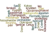 Danish-Vocabulary-List